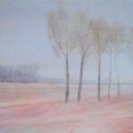 Haar-Bjork - Acrylic on canvas - 50cm x 40cm
